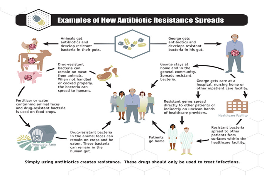 Spread the word…not the Antibiotic Resistant germs!